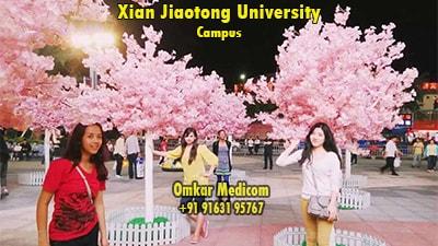 Xian Jiaotong University Campus 005